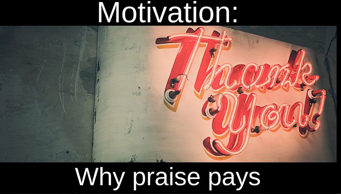 A promotion is nice, a bonus is quickly squandered, in IT Project Management, it's praise that pays