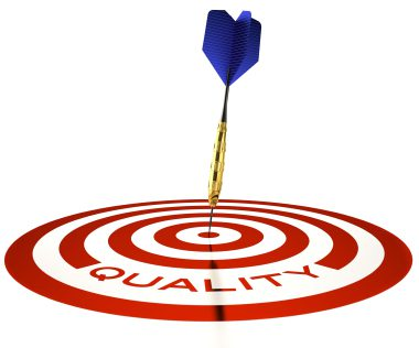 project quality and project success