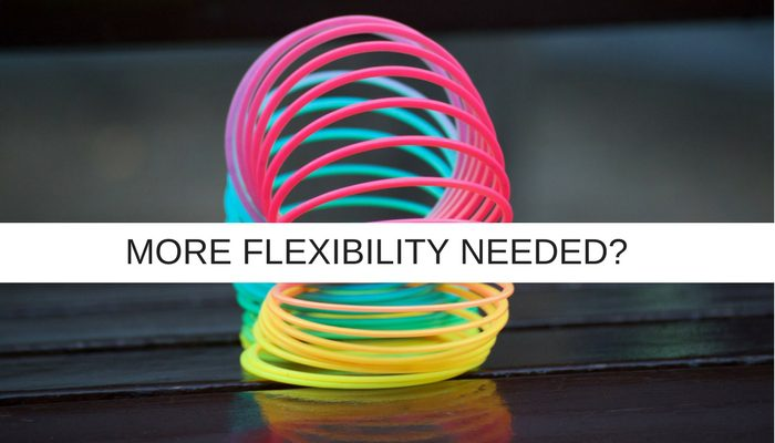 TO BE A SOLID IT PROJECT MANAGER - BE MORE FLEXIBLE